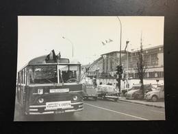 Autobus - Busse & Reisebusse