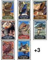 Ref. 214201 * MNH * - GIBRALTAR. 2008. BIRDS OF GIBRALTAR . PAJAROS DE GIBRALTAR - Gibraltar