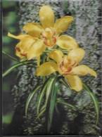 CARTOLINA EFFETTO TRIDIMENSIONALE -A SOGGETTO FIORI (ORCHIDEE) - VIAGGIATA 1971 - Cartoline