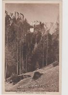 Primiero (TN)   ,  Castel Pietra   , Ediz. Gadenz  - F.p.   -  Anni '1940 - Trento
