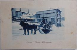 Davos. Grosse Schneewalze. - CPA Animéé De 1910 - GR Graubünden