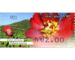 Ref. 300075 * MNH * - ISRAEL. 2013. FLOWER . FLOR - Unused Stamps (without Tabs)