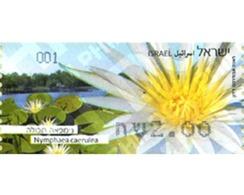 Ref. 307897 * MNH * - ISRAEL. 2013. MARGARITA - Unclassified