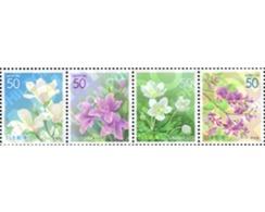 Ref. 146401 * MNH * - JAPAN. 2004. FLOWERS . FLORES - Plants