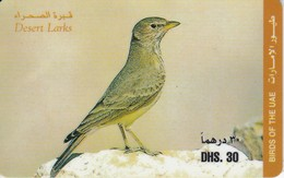 TARJETA DE EMIRATOS ARABES DE UN PAJARO (BIRD-PAJARO) - Sin Clasificación