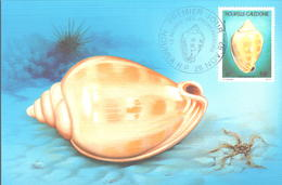 Carte Maxi FDC PA N° 290 Et 291 Coquillages 26 Novembre 1992 - Maximum Cards