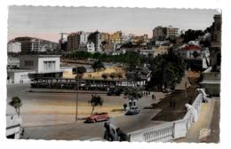MAROC. Tanger.   Avenue D'Espagne         (CPSM, Bords Dentelés, Format 9 X 14) - Tanger