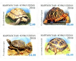 Ref. 258184 * MNH * - KYRGYZSTAN. 2010. TURTLES . TORTUGAS - Kyrgyzstan