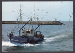 95918/ BATEAU DE PECHE - Pesca