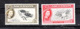Ascension - 1956. Tartarughe E Granchio. Turtles And Crab. MNH - Vita Acquatica