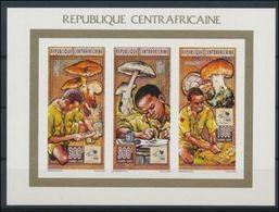 Centrafrique 1995  Mushrooms/ Champignons  Scout Scoutism Imperf MNH - Champignons