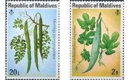 Ref. 340487 * MNH * - MALDIVES. 1977. FRUITS . FRUTOS - Obst & Früchte