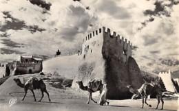 Agadir - L'entrée De La Casbah - Agadir