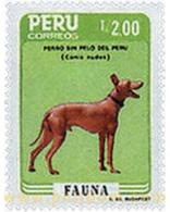 Ref. 51129 * MNH * - PERU. 1986. PERUVIAN FAUNA . FAUNA PERUANA - Stamps