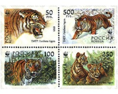 Ref. 5224 * MNH * - RUSSIA. 1993. SIBERIAN TIGER . TIGRE DE SIBERIA - 1992-.... Federation