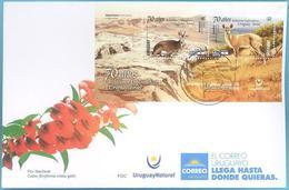 Uruguay 2019 SPD: 70 Años RR.DD. Con Israel. Fauna Autoctona: Guazubirá, Cabra Nubiana. - Francobolli