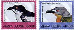 Ref. 362299 * MNH * - SIERRA LEONE. 1999. DIFFERENT CONTENTS . MOTIVOS VARIOS - Sierra Leone (1961-...)
