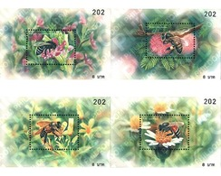 Ref. 145197 * MNH * - THAILAND. 2000. INSECTS . INSECTOS - Tailandia