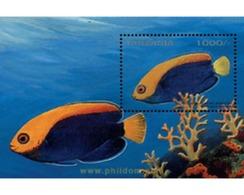 Ref. 365347 * MNH * - TANZANIA. 1996. TANZANIA REEF FISHES  . PECES DEL ARRECIFE DE TANZANIA - Tanzania (1964-...)