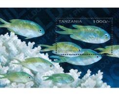 Ref. 365350 * MNH * - TANZANIA. 1996. TANZANIA REEF FISHES  . PECES DEL ARRECIFE DE TANZANIA - Tanzania (1964-...)