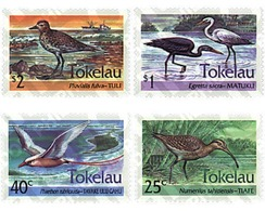 Ref. 37260 * MNH * - TOKELAU. 1993. BIRDS . AVES - Tokelau