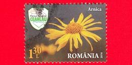 ROMANIA - Usato - 2016 - Fiori - Piante - Erba Medicinale - Arnica Montana - Ceahlau National Park - 1.30 - 1948-.... Repubbliche
