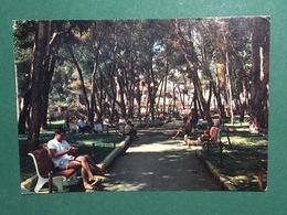 Cartolina Mondragone - Giardini Pubblici - 1969 - Caserta