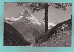 Small Map Postcard Of Matterhorn,Alps,Switzerland And Italy.,V110. - Switzerland