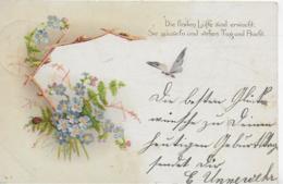 AK 0287  Vergissmeinnicht Und Schmetterling - Spruch Um 1900 - Blumen