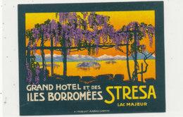 E H  699  / ETIQUETTE  D' HOTEL   GRAND HOTEL ET DES ILES BORROMEES  STRESA LAC MAJEUR - Hotel Labels