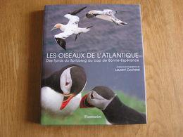 LES OISEAUX DE L' ATLANTIQUE Spitzberg Cap De Bonne Espérance Oiseau France Littoral Ornithologie Ornithologue Afrique - Animaux
