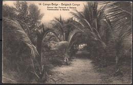 Congo - Entier Postal Stibbe 43 - Vue 14 Avenue Des Palmiers Banana - Kinshasa Gand 1919 - C8 - Ganzsachen