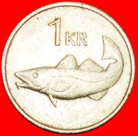 + GREAT BRITAIN FISH (1981-1987): ICELAND ★ 1 KRONE 1981! LOW START ★ NO RESERVE! - Islandia
