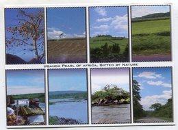 UGANDA - AK 357616 Pear Lof Africa - Gifted By Nature - Uganda