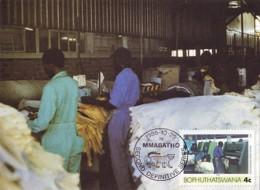 Bophuthatswana - Maximum Card Of 1985 - MiNr. 151 - Industries - Processing Sheep Skins - Bophuthatswana