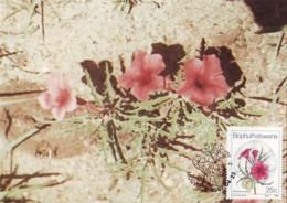 Bophuthatswana - Maximum Card Of 1987 - MiNr. 188 - Wildflowers - Pterodiscus Speciosus - Bophuthatswana