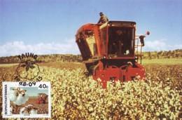 Bophuthatswana - Maximum Card Of 1988 - MiNr. 208 - Agricultural Crops - Cotton - Bophuthatswana