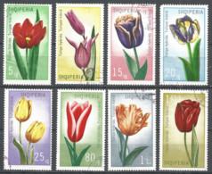 ALBANIA 1971 Used Stamps Set - Flowers - Albania