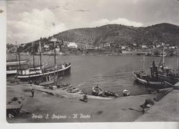 PORTO S. STEFANO GROSSETO IL PORTO BARCHE SHIP VELIERO - Grosseto