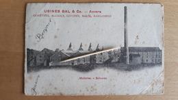 SCHOOTEN - Malteries - 1908 - Genievres, Alcools, Levures, Malts, Margarines - Schoten