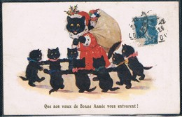 Chats Noir - Black Cats -katzen -  Zwarte Poesjes - Gatto - Katten