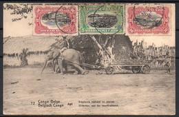 Congo - Entier Postal Stibbe 42- Vue 72 Elephant - Buta - 1917 - C8 - Entiers Postaux