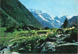 Valle D' Aosta - Cogne - Valnontey - Fg Vg - Altre Città