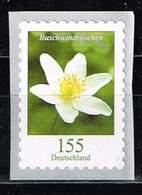 Bund 2019,Michel# 3484 R ** Blumen: Buschwindröschen Selbstklebend Von Der 500er Rolle Mit Nr. 35 - [7] Federal Republic