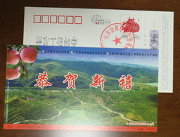 Red Fuji Apple,CN09 Zhongzhuang Town Ten Thousands Mu High Quality Fruit Base Pre-stamped Card,specimen Overprinted - Fruits