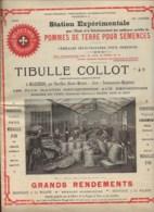 270719B - Revue 1908 TIBULLE COLLOT Agriculteur à MAIZIERES Haute Marne Pomme De Terre Semence Culture étude - Cultures