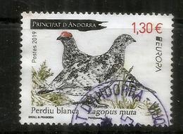 ANDORRA.  La Perdrix Des Neiges.(perdiz Nival) Europa 2019 ,   Oblitéré, 1 ère Qualité, Haute Faciale - Used Stamps