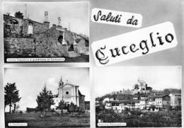 """4930 """" SALUTI DA CUCEGLIO """" 3 VEDUTE-CARTOLINA POSTALE ORIG. SPED. 1959 - Saluti Da.../ Gruss Aus..."""