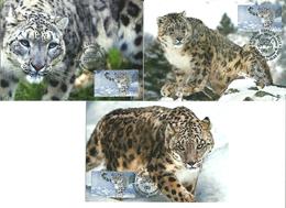 Kyrgyzstan (KEP) 2014 Fauna, Snow Leopard, Set Of 3 Maximumcards Mi -9 - Kyrgyzstan