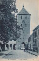 67 Haguenau. La Porte De Bitche - Haguenau